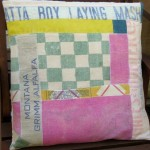 Feedsack Scrap Pillow
